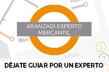 Experto Mercantil